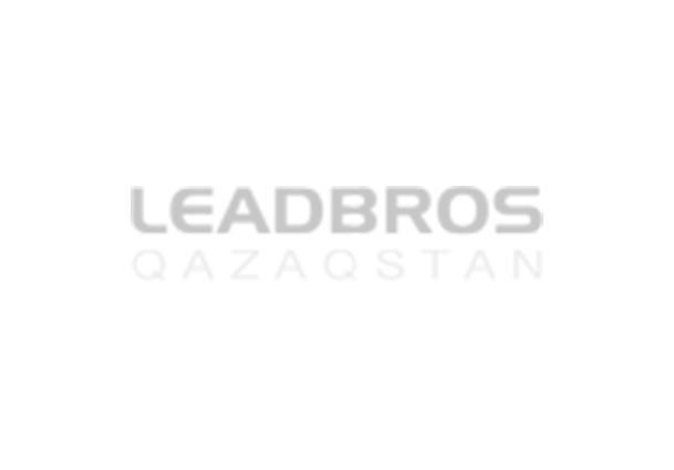 leadbros.kz